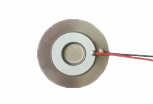 微孔雾化片 大直径25mm 频率110KHz ATC25-0106GDA